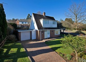Thumbnail 2 bed detached house to rent in Withy Close, Tiverton