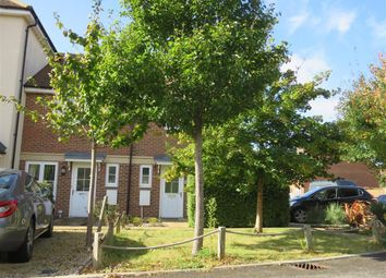 Thumbnail 2 bed property to rent in Buckle Gardens, Hellingly, Hailsham