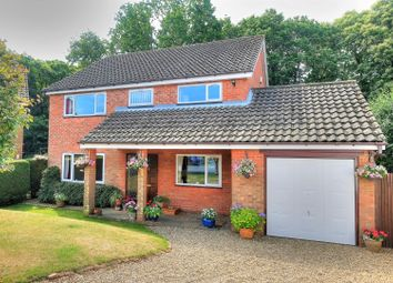 Thumbnail 4 bed detached house for sale in Maple Drive, Norwich
