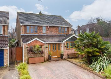 Thumbnail 4 bed detached house for sale in Millbank, Burgess Hill