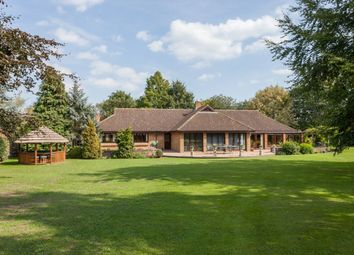 Thumbnail 4 bed detached bungalow for sale in Church Road, Yelverton, Norwich