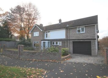Thumbnail 5 bed property to rent in Irwin Drive, Horsham