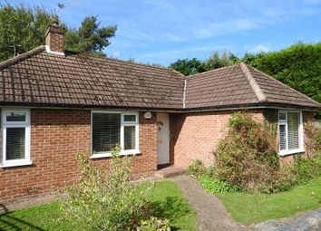 Thumbnail 3 bed bungalow for sale in Maple Road, Ashtead