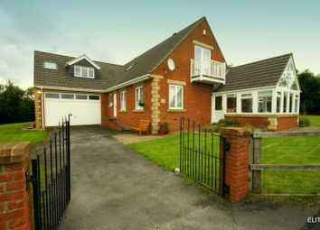 Thumbnail 4 bed detached house to rent in Holmside Lane, Burnhope, Durham