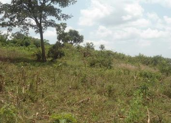 Thumbnail Land for sale in Rs10218, Bugema-Wakiso