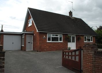 Thumbnail 4 bed detached bungalow to rent in Sarn, Malpas, Cheshire.