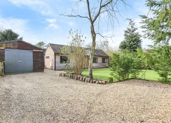 Thumbnail 3 bed detached bungalow for sale in Queens Road, Liphook