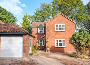 Thumbnail 4 bed detached house for sale in Buttermere, Great Notley, Braintree