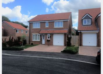 Thumbnail 4 bed detached house for sale in Mills Drive, Wellington