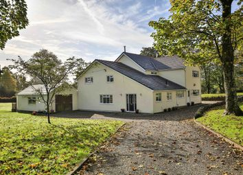 Thumbnail 4 bed detached house for sale in Tavern Y Coed, Tonteg, Pontypridd