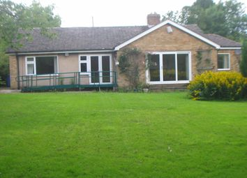 Thumbnail 3 bed bungalow to rent in Birney Edge, Ponteland