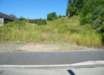 Land for sale in Glanarberth, Llechryd, Ceredigion SA43
