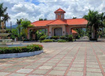 Thumbnail Land for sale in Laughlands, St Ann, Jamaica