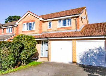 Thumbnail 4 bed detached house for sale in Shepherds Close, Hambrook, Chichester, West Sussex