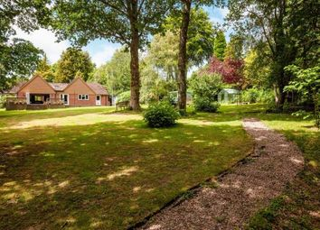 Thumbnail 4 bed bungalow for sale in Back Lane, Cross In Hand, Heathfield, East Sussex