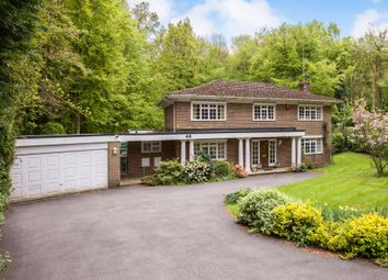 Thumbnail 5 bedroom detached house for sale in Magnolia Dene, Hazlemere, High Wycombe