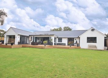 Thumbnail 5 bed bungalow for sale in Fir Tree Close, St Leonards, Ringwood