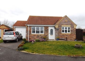 Thumbnail 2 bedroom bungalow to rent in Mumby Meadows, Mumby, Alford, Skegness