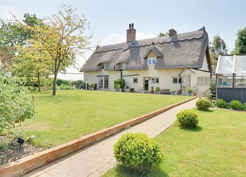 Thumbnail 4 bed cottage for sale in Abbess Roding, Ongar, Essex