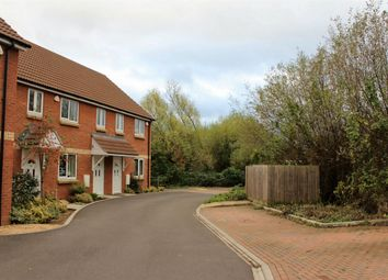 Thumbnail 3 bed terraced house to rent in Poplar Road, Taunton
