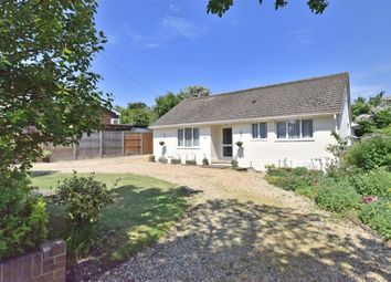 Thumbnail 4 bed bungalow for sale in Hazel Grove, Clanfield, Hampshire