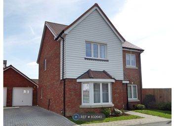 Thumbnail 4 bed detached house to rent in Hangar Drive, Tangmere, Chichester