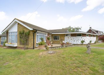 Thumbnail 4 bed bungalow for sale in Clovelly Road, Whitstable