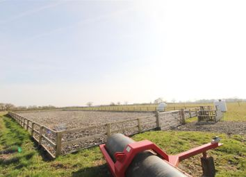 Thumbnail Land for sale in Throcking Road, Cottered, Buntingford