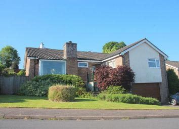 Thumbnail 3 bed detached bungalow for sale in Burnards Field Road, Colyton