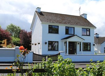 Thumbnail 4 bed detached house for sale in Furnace Hill, Drumshanbo, Leitrim
