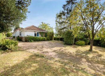 Thumbnail 3 bed bungalow for sale in Longwood Road, Owslebury, Winchester, Hampshire