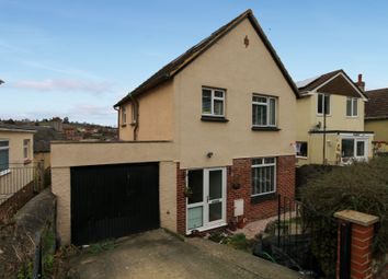 Thumbnail 3 bed detached house for sale in Gothic Road, Newton Abbot