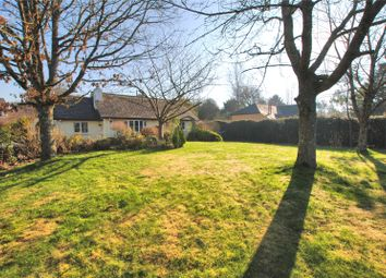 Thumbnail 3 bed bungalow for sale in Broadwoodkelly, Winkleigh