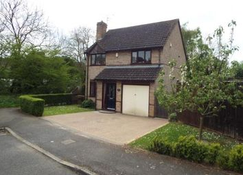 Thumbnail 4 bed detached house for sale in Ash Close, Uppingham, Oakham, Rutland