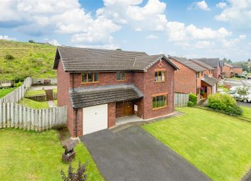 Thumbnail 4 bed detached house for sale in Maple Ridge Close, Llandrindod Wells