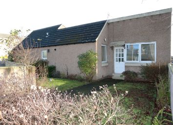 Thumbnail 3 bedroom detached bungalow for sale in Lime Street, Dundee