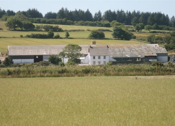 Thumbnail 3 bed farm for sale in Hermon, Glogue