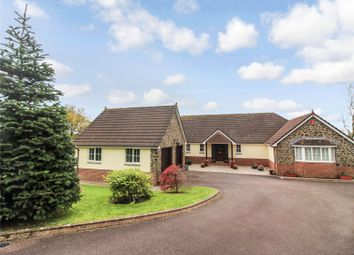 Thumbnail 4 bed bungalow for sale in Church Meadow, High Bickington, Umberleigh