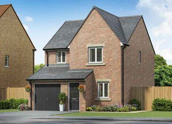 """3 bed property for sale in """"The Redwood"""" at Cheviot Place, Newton Aycliffe DL5"""