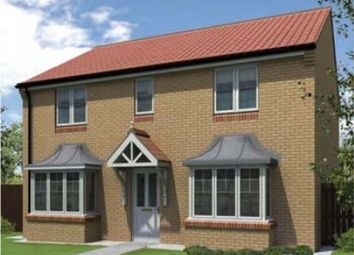 "Thumbnail 4 bed detached house for sale in ""The Westoe"" at St. Aloysius View, Hebburn"