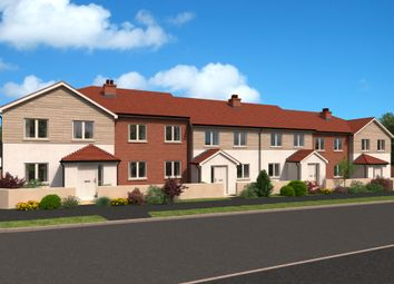 Thumbnail 2 bed detached house for sale in Coly Road, Colyton