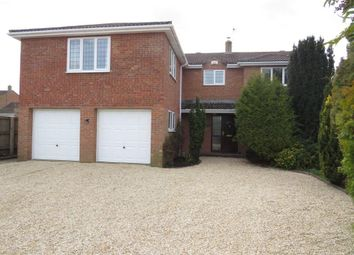Thumbnail Detached house for sale in St Marys Lane, Dilton Marsh, Westbury