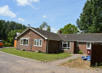 Thumbnail 3 bed detached bungalow for sale in Main Road, Nutbourne, Chichester