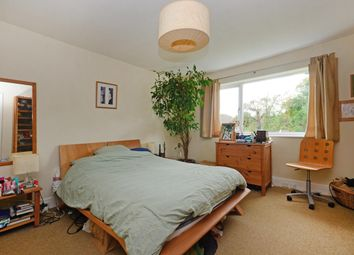 Cloonmore Drive, Sheffield S8