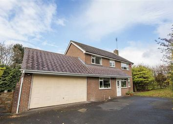 Thumbnail 4 bed property for sale in Birchall Park Avenue, Birchall, Leek