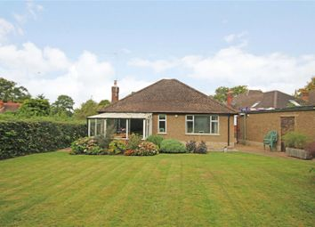 Thumbnail 3 bedroom detached bungalow for sale in Rowtown, Surrey