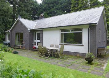 Thumbnail 3 bed bungalow for sale in Dinas Mawddwy, Machynlleth, Powys