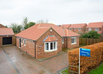 Thumbnail 3 bed detached bungalow to rent in Stillington Road, Easingwold, York
