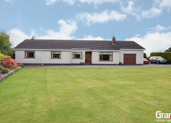 Thumbnail 5 bed detached bungalow for sale in Ballywalter Road, Greyabbey