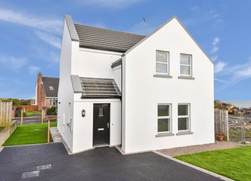 Thumbnail 3 bed detached house for sale in Vester Cove, Donaghadee